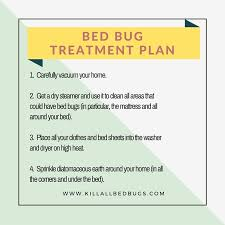 How Can I Kill Bed Bugs How To Kill Bed Bugs 10 Effective Methods Kill All Bed Bugs