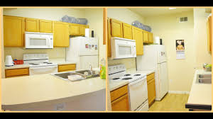 How To Organize Your Kitchen Counter Indian Kitchen Organization Youtube