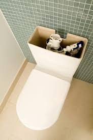 How To Prevent Black Mold In Bathroom What Causes Black Mold To Grow In A Toilet Water Tank Hunker