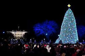 ge to illuminate the national tree with amazing led