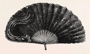 feather fan modern ostrich feather fan drawing by school