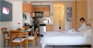 Several Good Suggestions For Designing Your Efficiency Apartments - Efficiency apartment designs