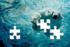 puzzles and national geographic magazine