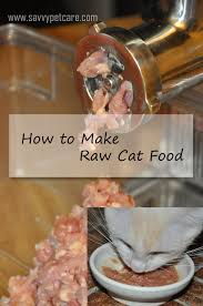 chicken chicken chicken my raw food diet christy paws