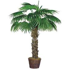 artificial tree artificial palm trees palm trees outdoor