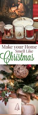 make your home smell like trees with thymes frasier fir