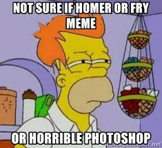 Fry Meme Maker - not sure if homer or fry meme or horrible photoshop homer and fry