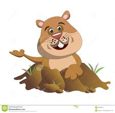 groundhog popping out of its burrow stock image image 28293641