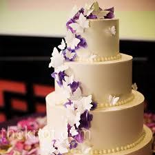 butterfly cake purple butterfly cake