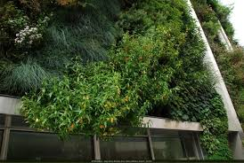 Vertical Garden Greenroofs Com Projects Drew Sam Cuddleback Iii Assembly