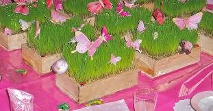 Birthday Party Home Decoration Ideas In India Home Decor Cool Fairy Birthday Party Ideas Take Time Relaxation