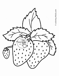 strawberries fruits coloring page for kids fruits coloring pages