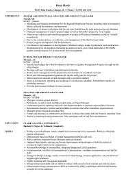 it project manager resume healthcare project manager resume sles velvet