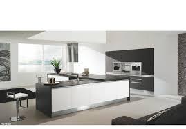 modern kitchens visionary kitchens u0026 custom cabinetry kitchen
