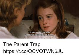 Not Mad Meme - i hope you te not mad love you because ll so much the parent trap
