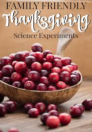 Cranberry For Thanksgiving 3 Family Friendly Thanksgiving Science Experiments From Abcs To Acts