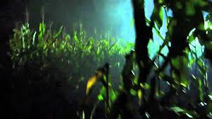 europa park halloween horror nights field of screams terenzi horror nights 2010 youtube