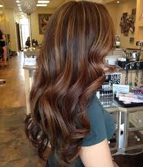 light brown highlights on dark hair 60 stunning dark and light brown hair with highlights ideas