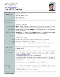 Example Of Good Resumes by Free Resume Templates Personal Assistant Sample Good Cv Examples