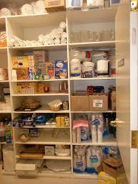 kitchen pantry shelving ideas u2014 decor trends best pantry