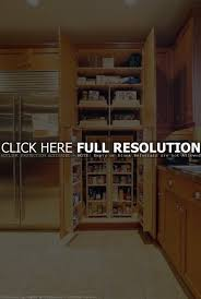 cabinet oak kitchen storage cabinet sauder home plus sienna oak