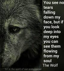 Lone Wolf Meme - 1433 best wolves images on pinterest wolves thoughts and wolf