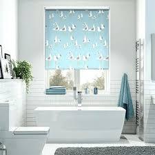 Bathroom Window Blinds Ideas Blinds For Small Bathroom Windows Kajimaya Info