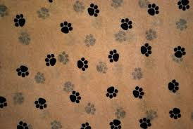 paw print tissue paper small paw print on kraft tissue paper 335 gift wrap