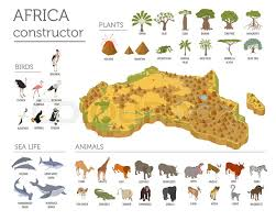 3d africa map vector flat 3d isometric africa flora and fauna map constructor elements