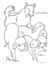 herd dog color 011