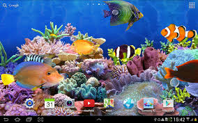 aquarium live wallpaper hd android apps on google play