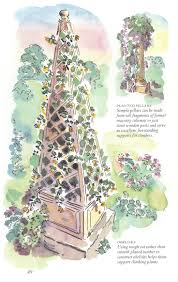 10 best garden obelisks images on pinterest arbors rose trellis