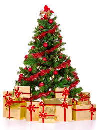 real christmas tree pictures christmas lights decoration