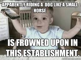 Etrade Baby Meme - apparently riding the dog like a small horse is frowned upon in this