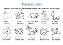 animals u0026 colours worksheet rosaespanola teaching resources tes