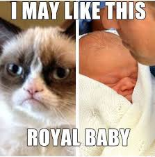 Grumpy Cat Meme Pics - grumpy cat meme grumpy cat pictures and angry cat meme