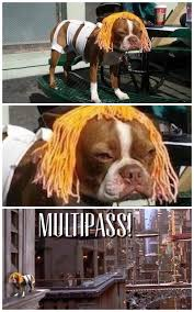 Fifth Element Meme - the fifth element cosplay the meta picture