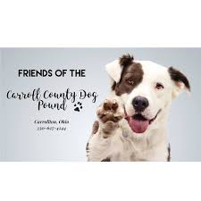 friends of the carroll county dog pound ohio home facebook