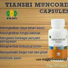 h obat kuat alami pasutri com jual obat kuat herbal pria tahan