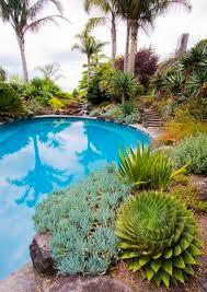 Desert Backyard Landscaping Ideas Southwestern Garden Landscape Pool Borders Desert Backyard Ideas