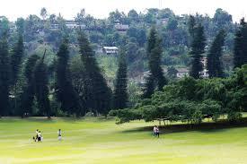 cool trees botanical gardens in kandy u2013 vermonters in sri lanka