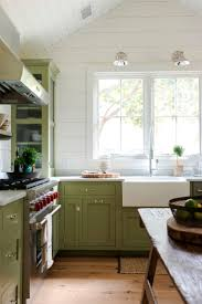green kitchen cabinets green kitchen cabinets pictures options tips ideas hgtv ripping