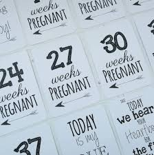 classic pregnancy milestone cards by eleanor designs