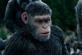 6 pics of caesar from planet of the apes with a caesar