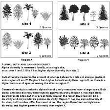 components of biodiversity
