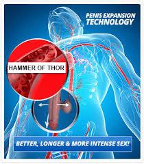 hammer of thor capsule medicine price india 7836001999