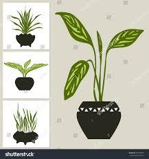 indoor plants images set green indoor plants pots home stock vector 659009878
