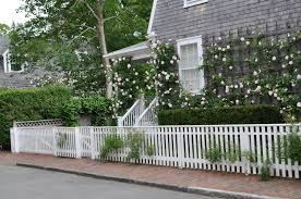 nantucket roses revealed jayne on weed street