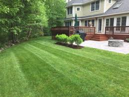 ambidextrous landscaping ambidextrous landscaping home