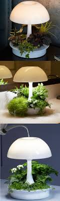 where to buy indoor grow lights technology says the led grow lights can be the god for indoor plants